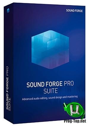 Редактор музыки - MAGIX Sound Forge Pro Suite 14.0 Build 43 (x86/x64)