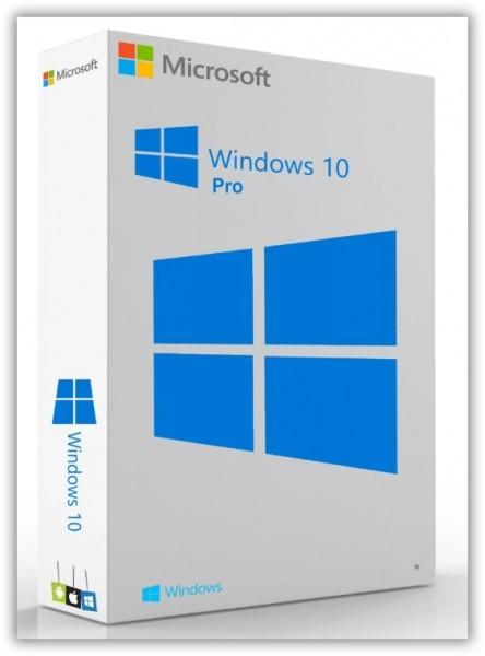 Windows 10 Pro 20H2 x64 + Office 2019 by LaMonstre Октябрь 2020